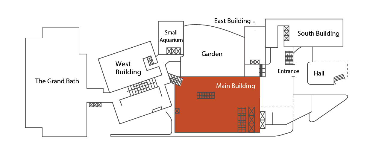 Layout of the Main Building