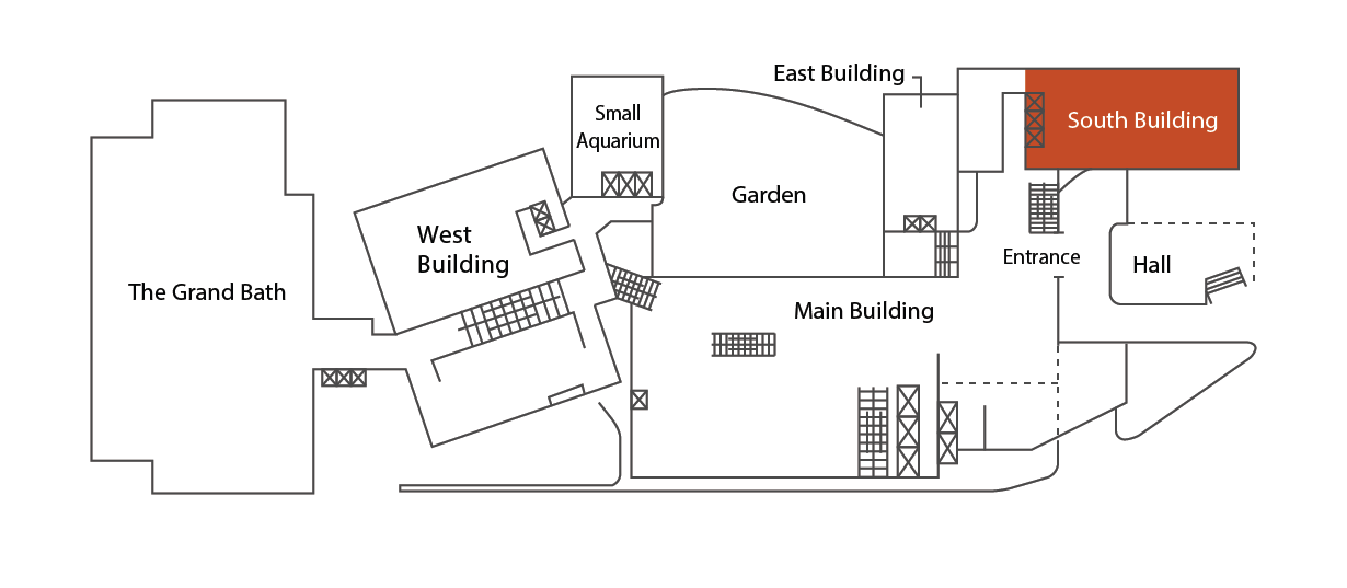 Location in the South Building